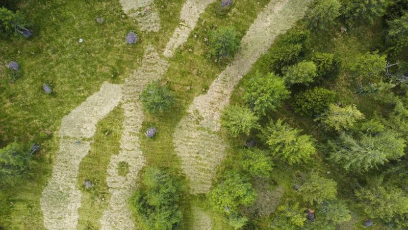 Bodenformen aus der Luft